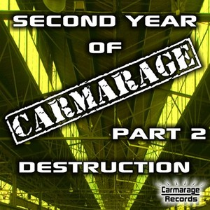 VARIOUS - Second Year Of Carmarage (Part 2)
