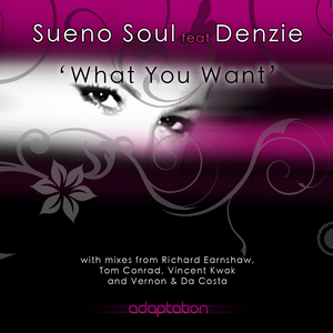 SUENO SOUL feat DENZIE - What You Want