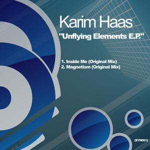 HAAS, Karim - Unifying Elements