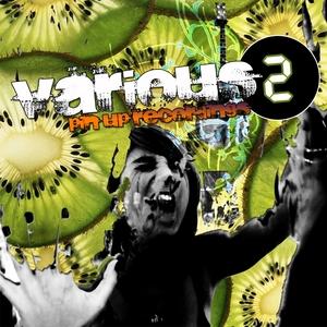 PUSHKAR, Damir/MAGNUS WEDBERG/THE JORDAN TWINS - Various 002