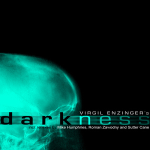 VIRGIL ENZINGER - Darkness