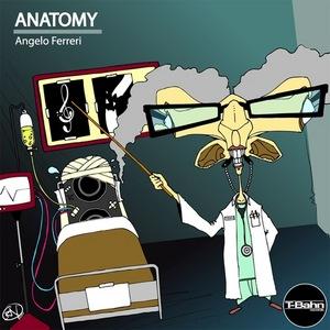 FERRERI, Angelo - Anatomy