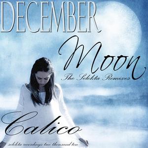CALICO - December Moon (Selekta remixes)