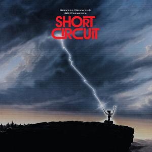 501 - Short Circuit