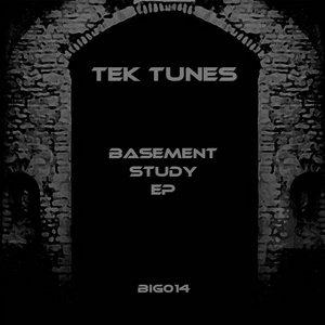 TEK TUNES - Basement Study