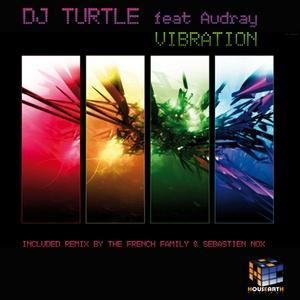 DJ TURTLE feat AUDREY - Vibration