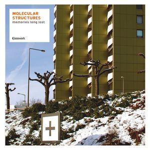 MOLECULAR STRUCTURES/VARIOUS - Memories Long Lost (Basswerk CD 6)