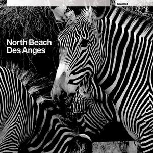 NORTH BEACH - Des Anges