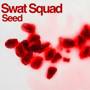 SWAT SQUAD - Seed