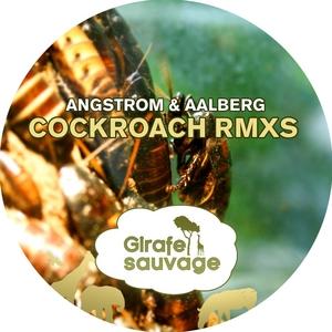 ANGSTROM & AALBERG - Cockroach (remixes)