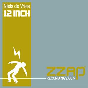 DE VRIES, Niels - 12 Inch