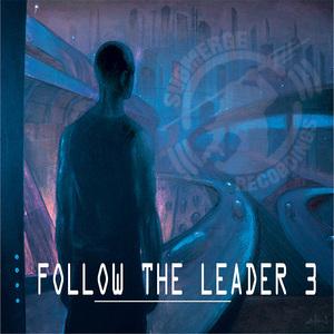 VARIOUS - Follow The Leader 3