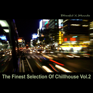 VARIOUS - The Finest Selection Of Chillhouse Vol 2