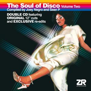 NEGRO, Joey/SEAN P/VARIOUS - The Soul Of Disco Vol 2
