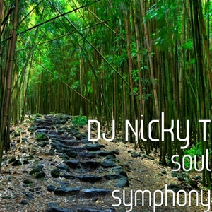 DJ NICKY T - Soul Symphony
