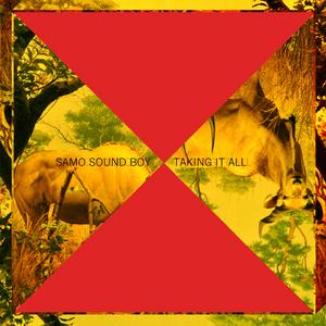 SAMO SOUND BOY - Taking It All