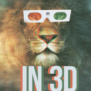 TENDERLIONS - In 3D