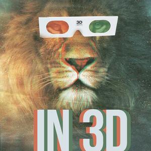 TENDERLIONS - In 3D