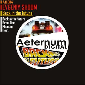 EVGENIY SHOOM - Back In The Future EP