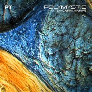 VARIOUS - Polymystic: Polytechnic Album Sampler 009