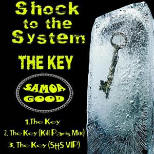 SHOCK TO THE SYSTEM - The Key