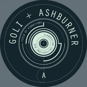ASHBURNER & GOLI - Field Of Vibrations