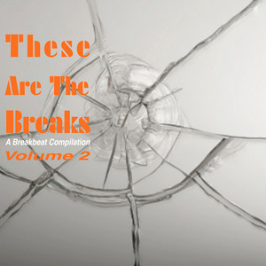 VARIOUS - These Are The Breaks Vol 2