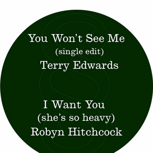EDWARDS, Terry/ROBYN HITCHCOCK - You Won't See Me