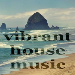 VARIOUS - Vibrant House Music (Deeper Minitech Compilation)