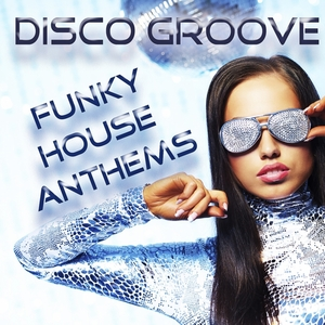 LOVE ASSASSINS/VARIOUS - Disco Groove: Funky House Anthems (mixed by Love Assassins)