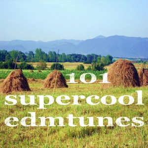 VARIOUS - 101 Super Cool Edm Tunes (Creative Ambient & Deeper House Music)
