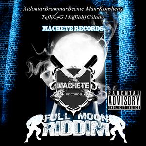 VARIOUS - Full Moon Riddim