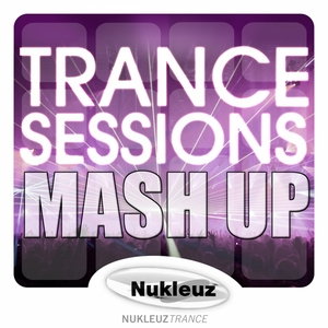 CUT & SPLICE/VARIOUS - Trance Sessions: Mash Up (mixed by Cut & Splice) (unmixed tracks)