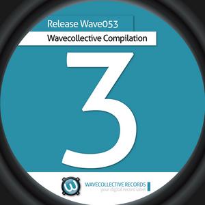 VARIOUS - Wavecollective Compilation 3