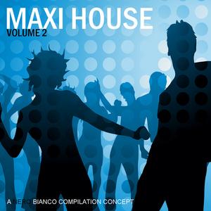 VARIOUS - Maxi House Volume 2