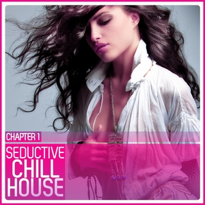VARIOUS - Seductive Chill House Chapter 1