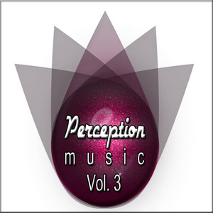 VARIOUS - Perception Music Vol 3