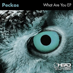 PECKOS - What Are You EP