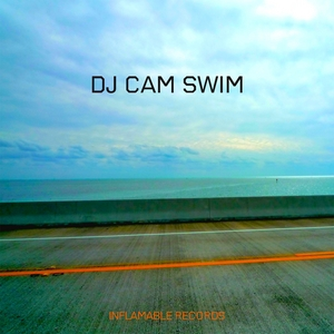 DJ CAM feat CHRIS JAMES - Swim