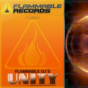 FLAMMABLE DJS - Unity