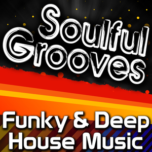 VARIOUS - Soulful Grooves - Funky & Deep House Music