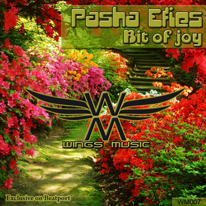 PASHA EFIES - Bit Of Joy