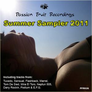 VARIOUS - Summer 2011 Sampler