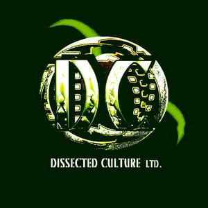 DMR - The Crypt