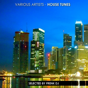 FRENK DJ/VARIOUS - House Tunes (selected by Frenk DJ)