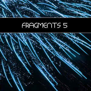 RAINMAN, Frank/VARIOUS - Fragments 5 (incl DJ mix)