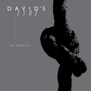 DAVID'S LYRE - In Arms (Remix)