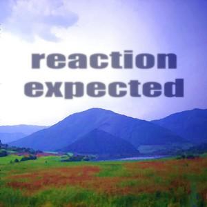 PADURARU, Cristian - Reaction Expected