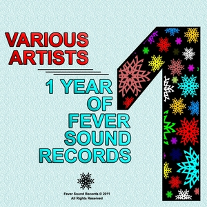 VARIOUS - One Year Of Fever Sound Records