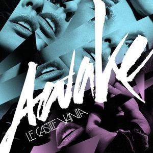 LE CASTLE VANIA - Awake
